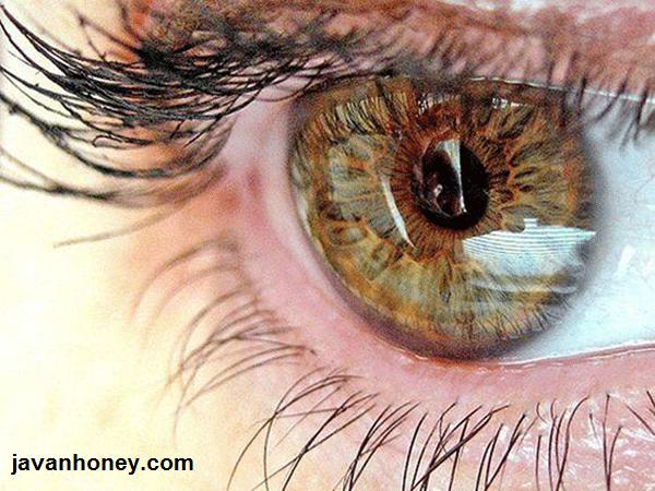 درمان بیماری چشم با عسل