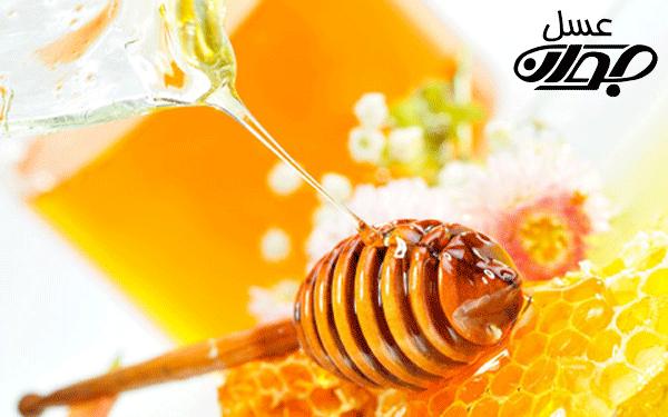 تاریخچه ی عسل