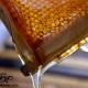 استخراج عسل